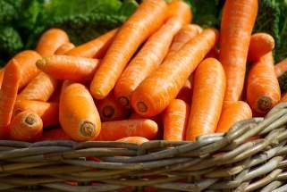 моркови 1