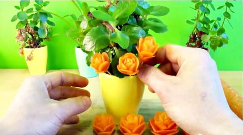 цветови од морков
