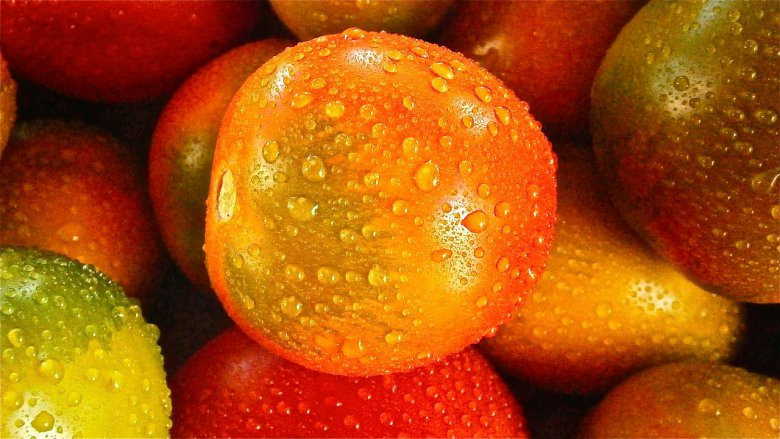 спреј против пестициди
