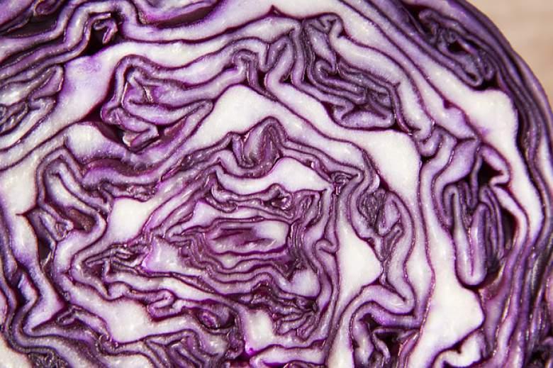 Црвена зелка - зеленчук со највисока содржина на антиоксиданси
