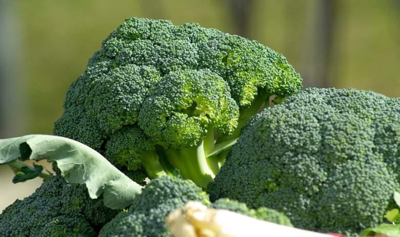 Вкусната и здрава брокула е моќен борец против рак