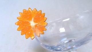 цвет од мандарина