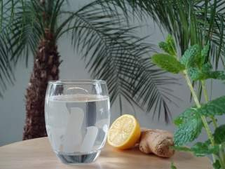Освежителен тоник од лимон и ѓумбир 1
