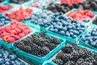 ishrana protiv kancer 1