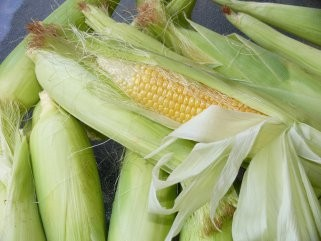 Кои се придобивките од консумацијата на пченкарно брашно 1