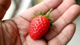 едноставни совети за превенција и третман на атеросклероза 1