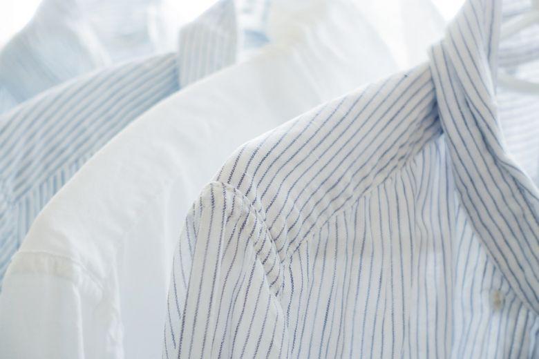 бели алишта