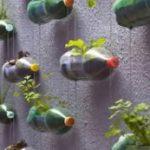 Претворете ги пластичните шишиња во висечка градина 1