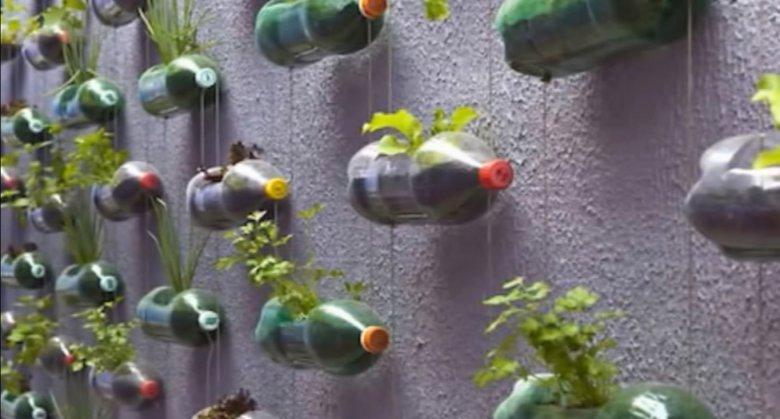 Претворете ги пластичните шишиња во висечка градина 2