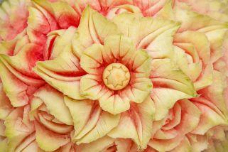 letni dekoracii od ovosje 1