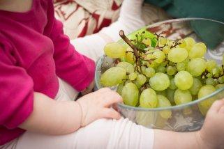 Здравото семе од грозје е најјак антиоксиданс и чувар на срцето 1