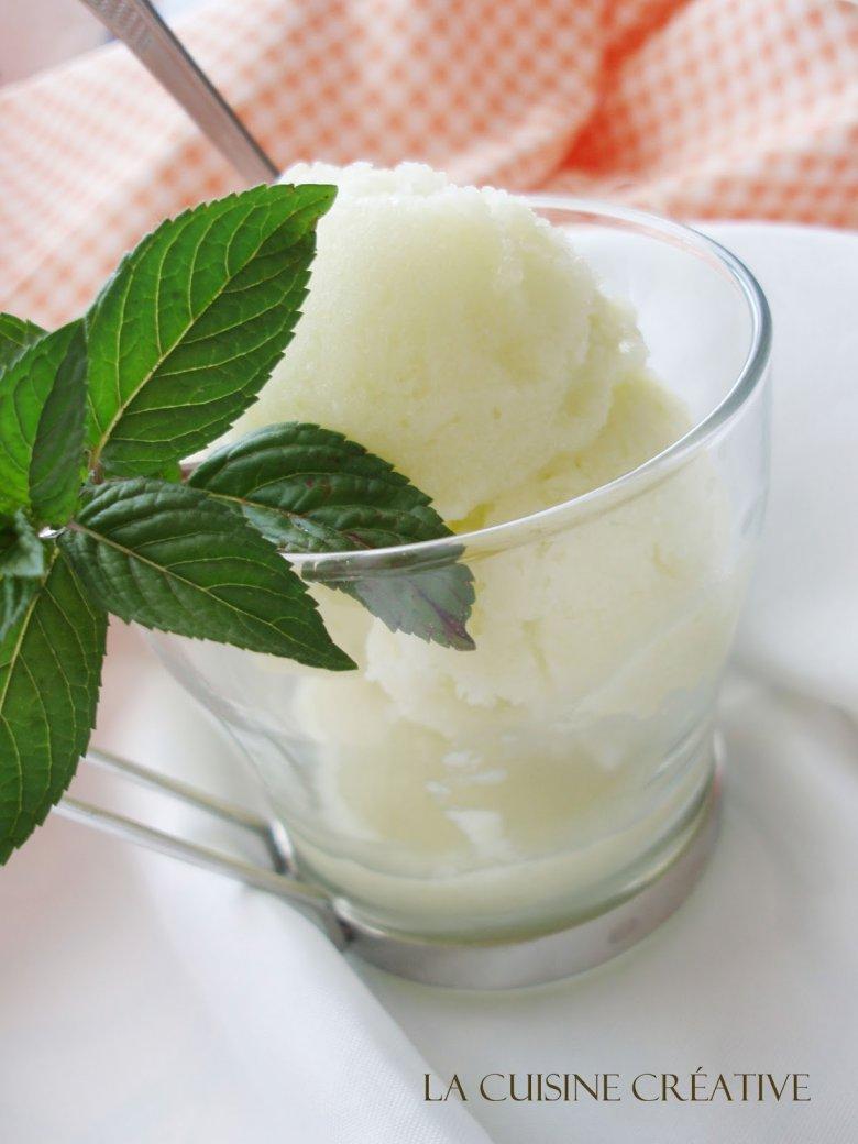 Домашен сладолед од диња 2
