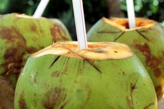 kokosova voda 1