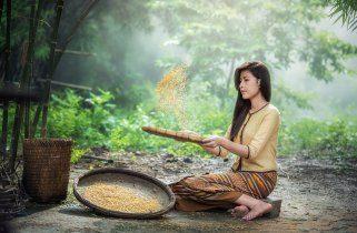 Како да направите оризова вода за подобро здравје на косата и кожата 1