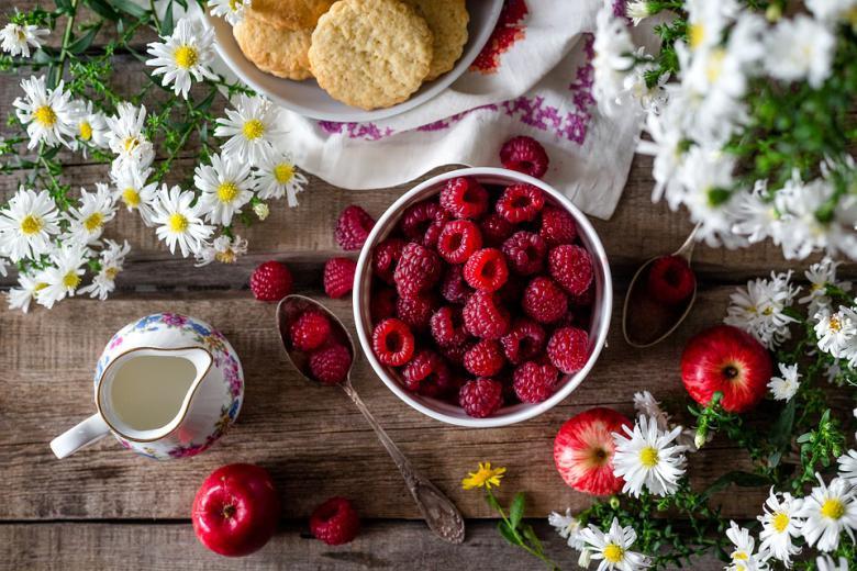 koja ishrana e pogodna vo letnite denovi