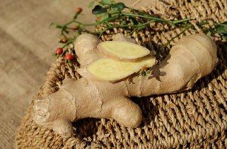 Засадете ѓумбир во домашни услови 1