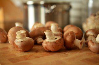 Печурки - моќен лек од природата 1
