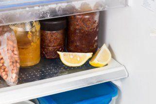 замрзнување на храната