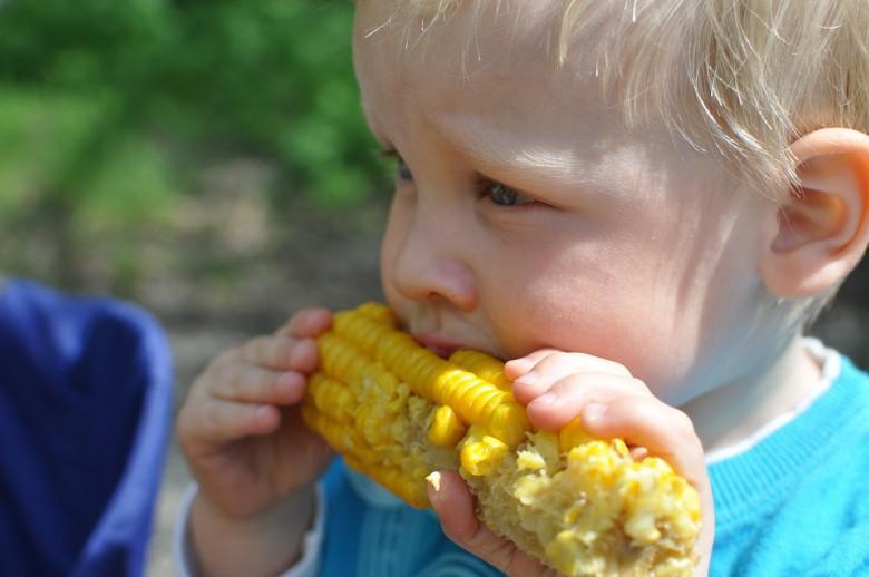 здрава исхрана деца