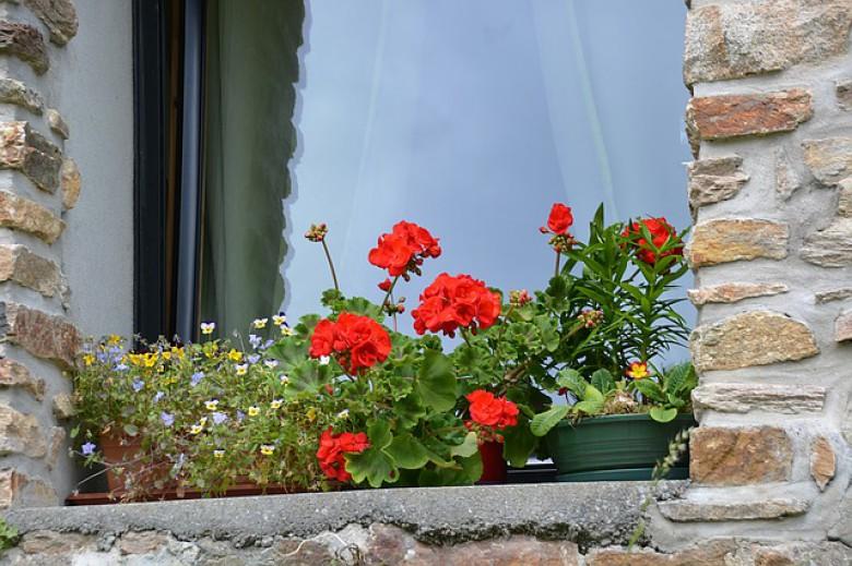 Домашно средство за чистење на прозорци и стакло
