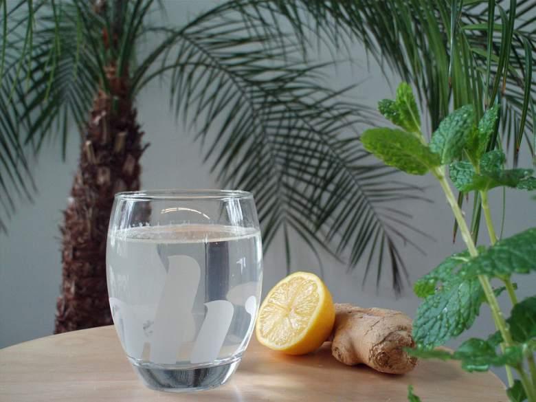 Освежителен тоник од лимон и ѓумбир 2