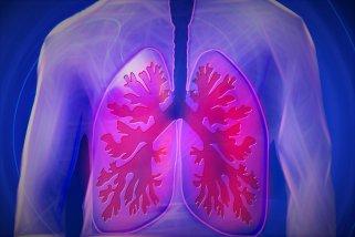 7 здрави намирници кои ги чистат белите дробови од токсини 1