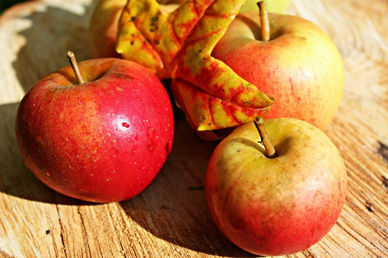 4 намирници кои се највкусни во есен 2