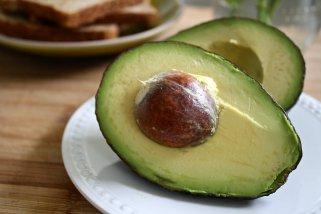 факти за авокадото 1