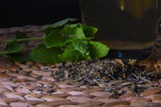 Направете домашно масло од нане - лек за акни 1