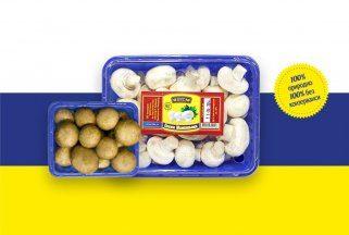 5 здравствени придобивки од печурките 1