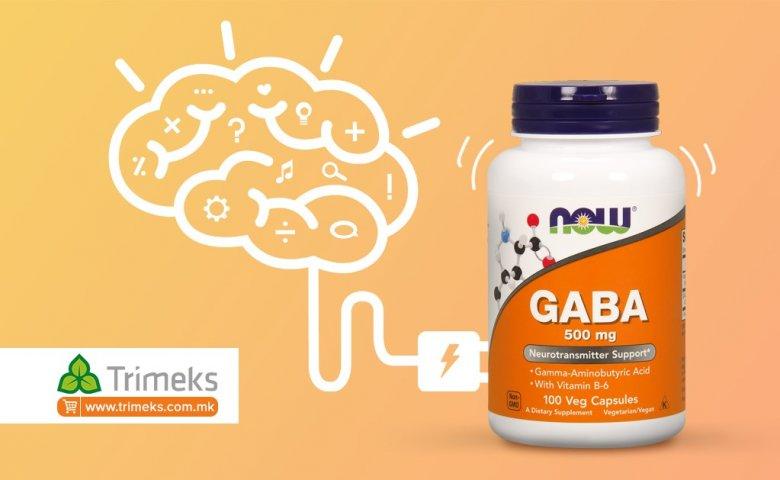GABA neurotransmiter 2