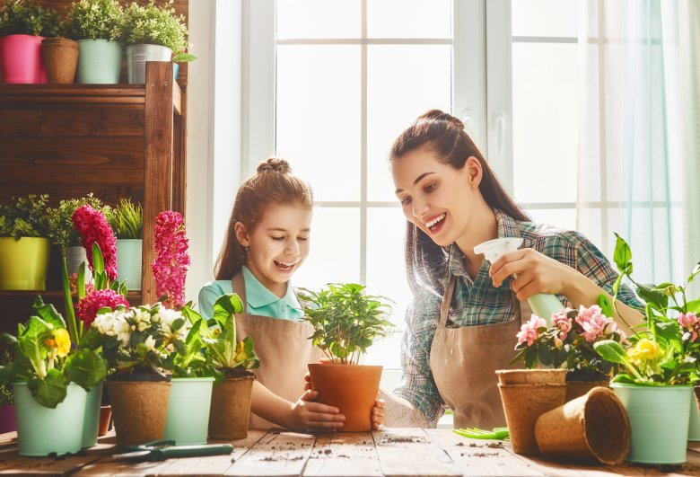 Природен препарат за растенија - прихрана