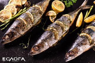 печење на риба на жар